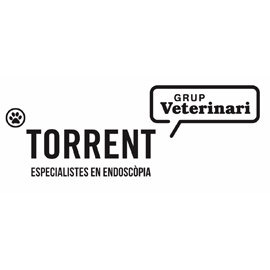 Grup Veterinari Torrent